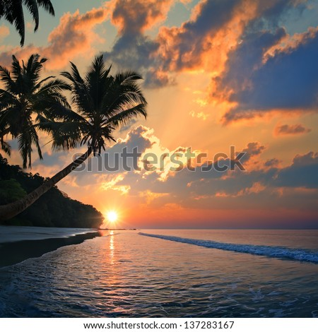 Tropical beach with palm trees at sunset time and reflections on water surface - stock photo