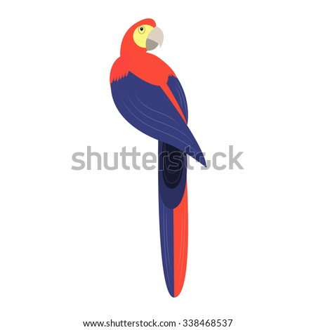 Tropical birds. Parrot. Colorful parrot on white background. Isolated  illustration - stock photo