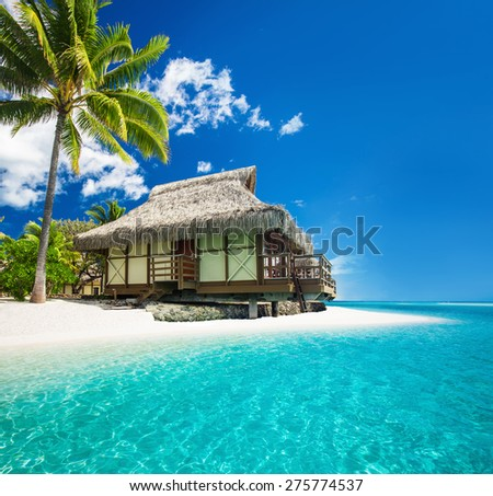 Tropical bungallow on the amazing beach with a palm tree - stock photo