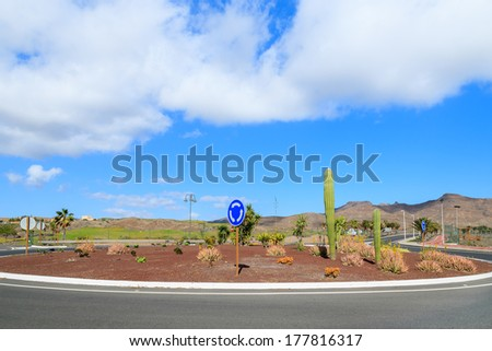 Tropical cactus plants growing on roundabout road on Fuerteventura, Las Playitas town, Canary Islands, Spain  - stock photo