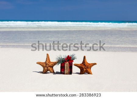 Tropical celebration on beach, two starfishes and present box closeup
