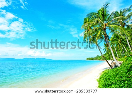 Tropical coast, beach with hang palm trees - stock photo