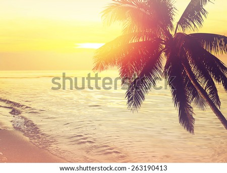 Tropical coconut trees at sunset over the sea. Vintage effect - stock photo