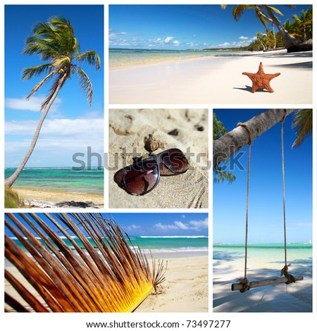 Tropical collage with starfish, palm, beach and sunglasses - stock photo