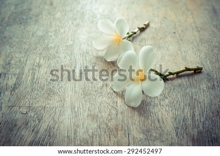 Tropical flowers frangipani on wood smooth in dark vintage style - stock photo