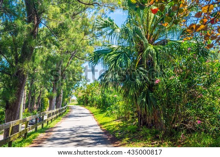 Tropical flowers, palm trees and pines surround this walk way on St. George's in Bermuda. - stock photo