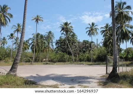 tropical football stadium - stock photo