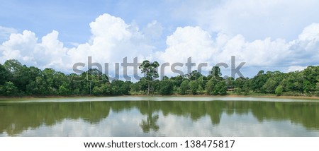 Tropical forest and blue sky - stock photo