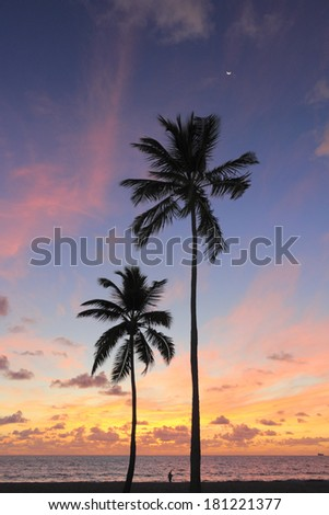 Tropical Fort Lauderdale, Florida beach park pretty morning sunrise overlooking the calm Atlantic Ocean water, two palm trees, a person and a boat under a pink, yellow, gold, purple, orange blue sky.  - stock photo