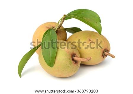 Tropical fruit - Chiku isolated on white background. - stock photo