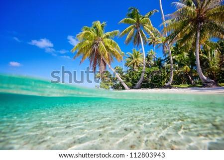 Tropical island at Tikehau atoll in French Polynesia - stock photo
