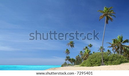 Tropical island paradise with idyllic white sand beach, turquoise waters, blue sky and graceful palm trees - stock photo