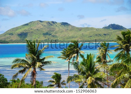 Tropical island with Fijian Palm trees - stock photo