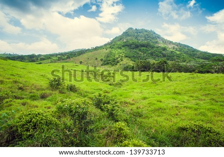 Tropical jungle mountain in Dominican Republic, Seychelles, Caribbean, Mauritius, Philippines, Bahamas. Panoramic views of jungle mountains in Costa Rica. - stock photo