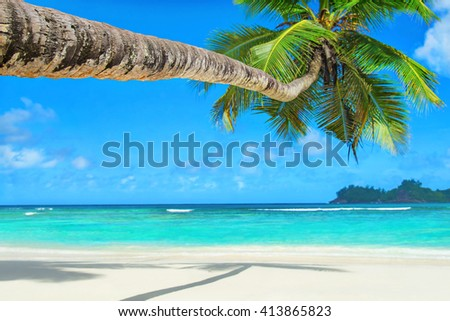 Tropical ocean beach Baie Lazare with palm tree in bright sunny day, Mahe island, Seychelles - vacation background - stock photo