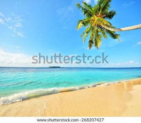 Tropical paradise beach with golden sand - stock photo