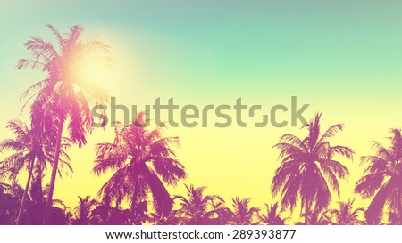 Tropical paradise design banner background. Coconut palm tree silhouettes at sunset. Panoramic view. Vintage effect. - stock photo