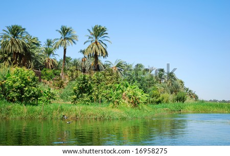 Tropical Paradise - Nile River in Egypt - stock photo