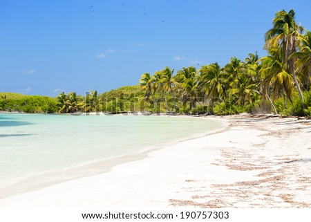 Tropical paradise on Contoy Island National Park, Mexico - stock photo