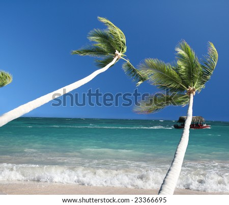 Tropical Paradise - White Sands Beach, Caribbean Ocean and Coconut Palm Trees background suitable for a variety of traveling and advertising designs - stock photo
