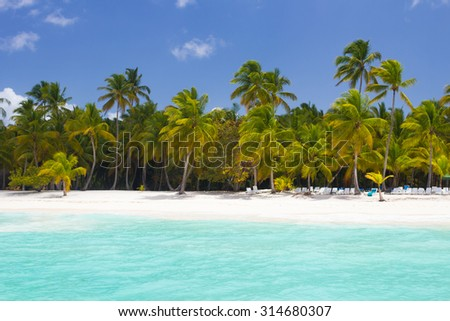 Tropical paradise with palm trees at blue lagoon on caribbean wild beach, Saona Island, Dominican Republic - stock photo