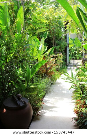 Tropical plants along walking path to the door - stock photo