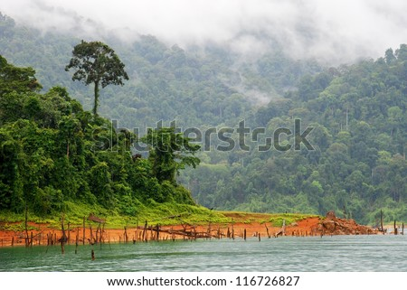 Tropical rainforest at Kenyir Lake in Terengganu, Malaysia, a man made lake built for purpose of hydroelectric power supply - stock photo