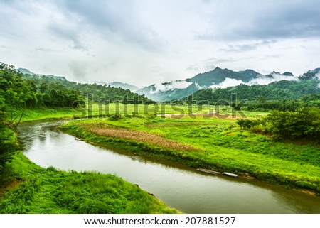 tropical rainforest,Thong Pha Phum National Park Kanchanaburi - stock photo