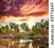 Tropical resort in palm tree forest near the lake at purple dramatic sunset background in Varkala, Kerala, India - stock photo