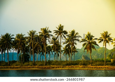 tropical resort with beach and palms at sunset, beautiful sky with clouds - stock photo