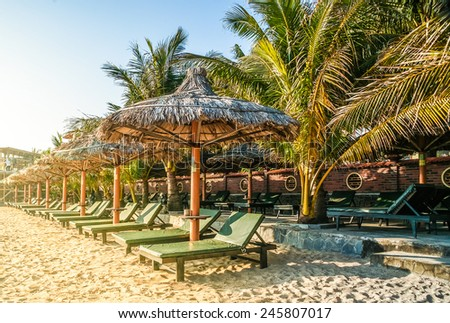 Tropical resort with chaise longs arranged in a row under palms on sandy beach - stock photo