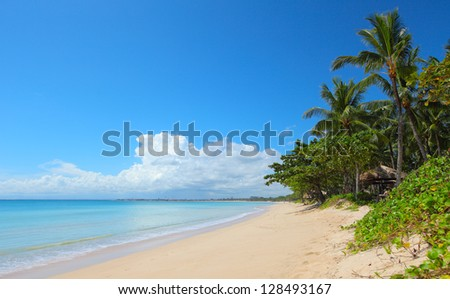 Tropical sandy beach with palm trees and calm Indian Ocean. Bali - stock photo