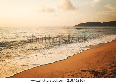 Tropical seashore - stock photo