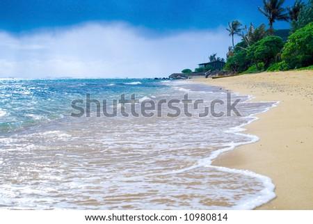 Tropical Shore - stock photo