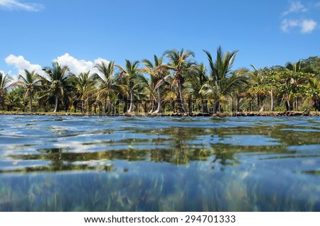 Tropical shore with coconut trees viewed from water surface, Caribbean sea, Panama - stock photo