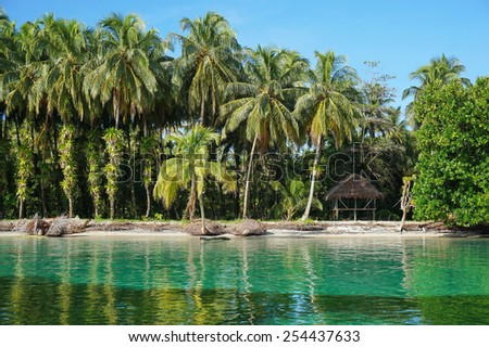 Tropical shore with lush coconut trees and a thatched hut, Caribbean, Zapatillas islands, Bocas del Toro, Panama - stock photo
