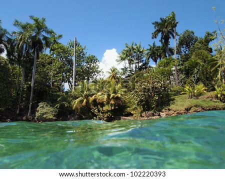 Tropical shore with lush vegetation and turquoise water, Caribbean sea - stock photo