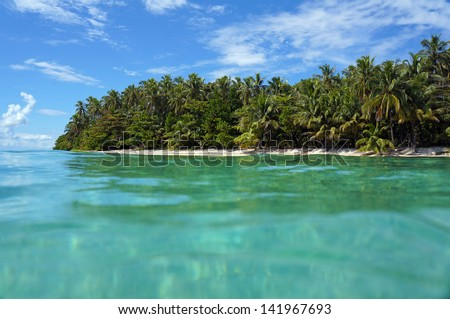 Tropical shore with luxuriant vegetation viewed from the water surface, Caribbean sea, Zapatilla islands, Bocas del Toro, Panama - stock photo