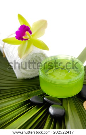 Tropical spa setting and palm - stock photo