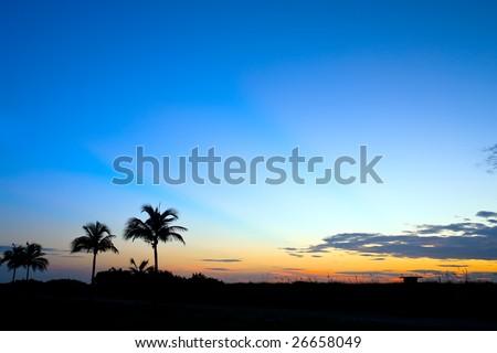 Tropical sunrise, Miami, FL - stock photo