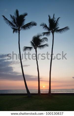 tropical sunset in Hawaii Big Island - stock photo