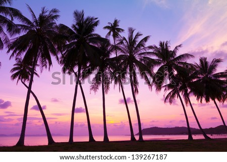 Tropical sunset over sea with palm trees, Thailand - stock photo