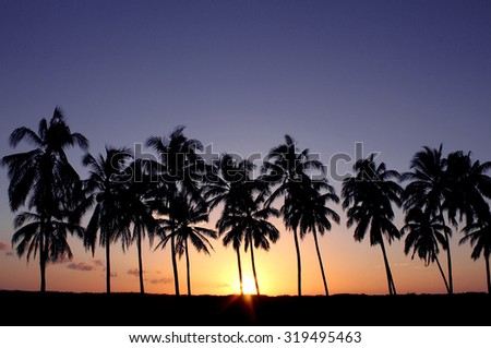 Tropical sunset with palm trees. Photographed in Playa Junquillal, Guanacaste, Costa Rica in Jan 2015. - stock photo