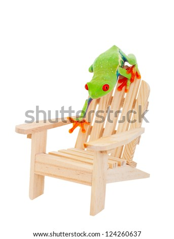 Tropical vacation concept.  A Red-Eyed Tree Frog on an Adirondack chair.  Isolated with clipping path. - stock photo