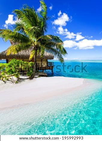 Tropical villa and palm tree next to amazing blue lagoon - stock photo