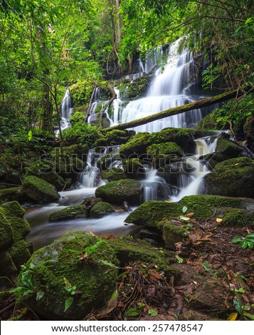 tropical waterfall in Deep forest - stock photo