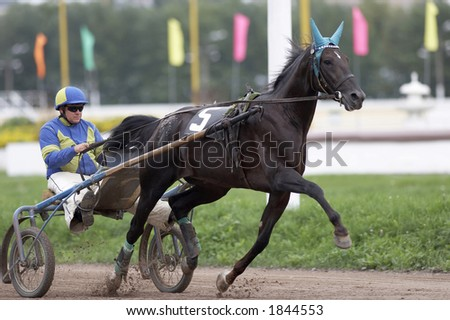Trotter heat in Moscow (Russia) - stock photo