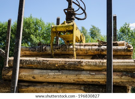 truck clippers unloading the cut logs neatly piles trailer forest area  - stock photo