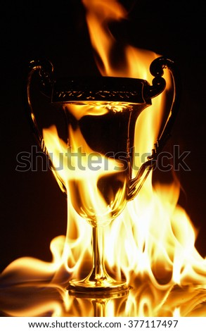 True champions go down in a blaze of glory. - stock photo