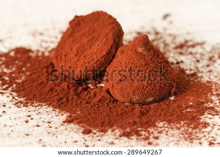 Truffle chocolate candies on cocoa powder - stock photo